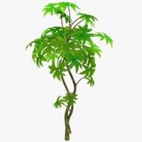 small tree 3D