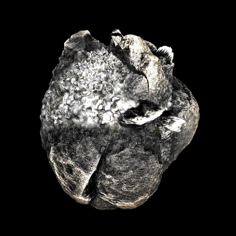 3D model meteorite