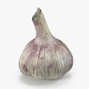 young garlic bulb 3D model