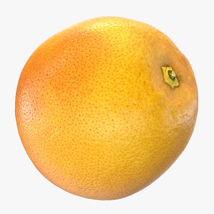 grapefruit realistic 3D model