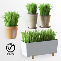 plants v1 3D model