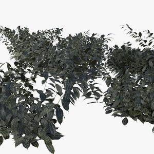 3D bush model