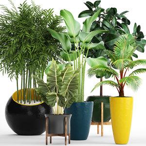 plants 3D