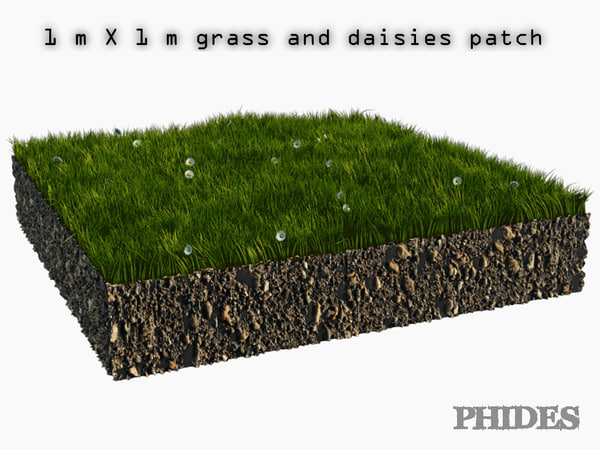 3D daisies meadow patch 1 model