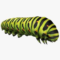 realistic caterpillars model