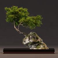 3D model bonsai