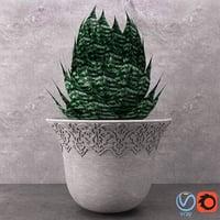 3D model interior nature