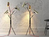 jackson delightfull 3D model