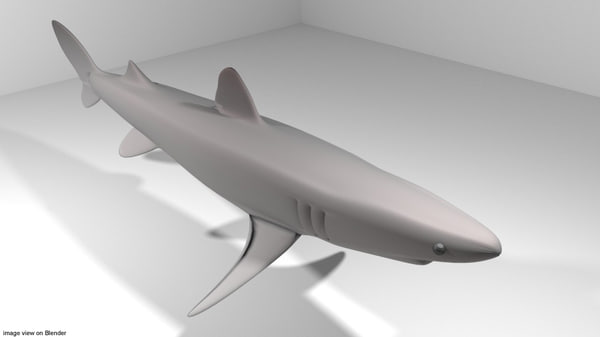 piked shark model