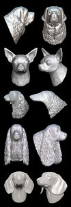 canine dog 3D model