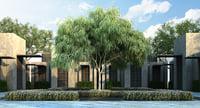 3D australian willow