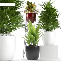 plants set 116 3D model