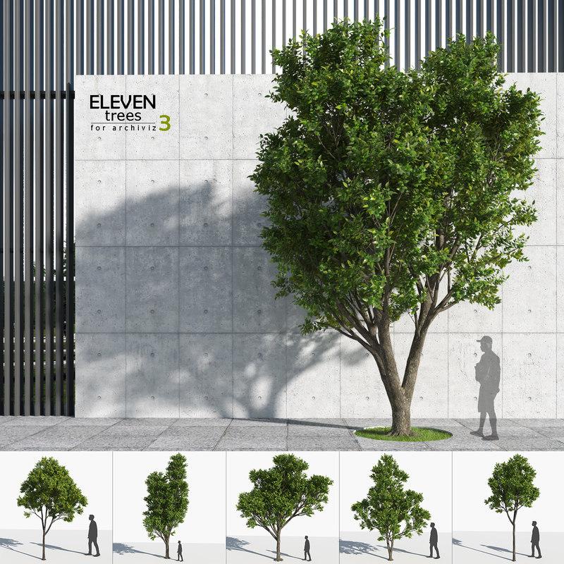 3D trees 3 model