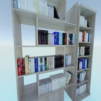 Book Shelfs with books