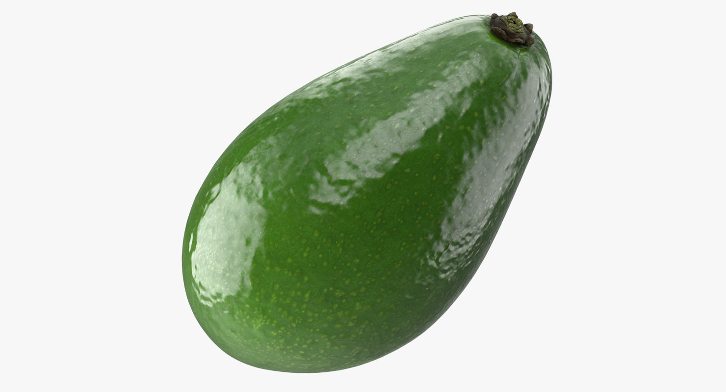 avocado realistic 3D model