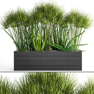 3D tropical plants flowerpot