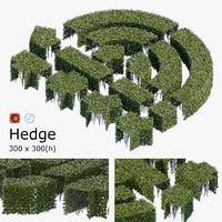 3D hedge h