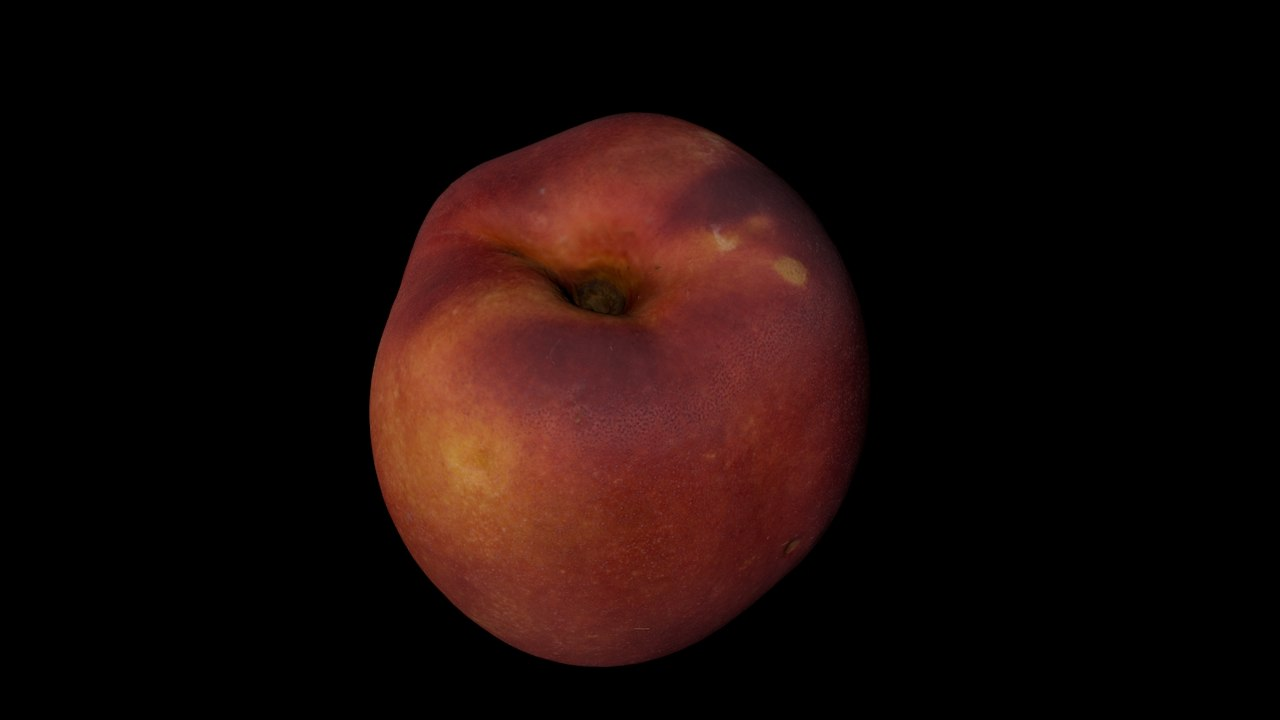 nectarine scan 3D model