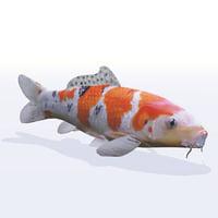 3D fish koi carp