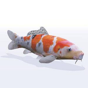 3D koy carp fish