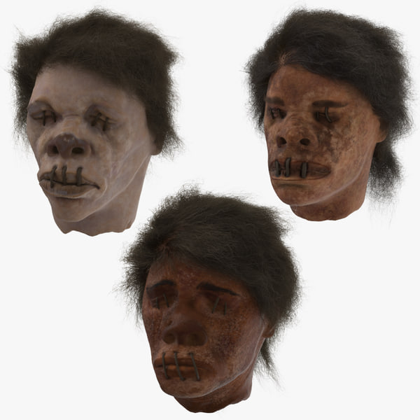 3D 3 shrunken heads model