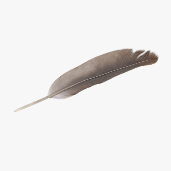 feather 3D