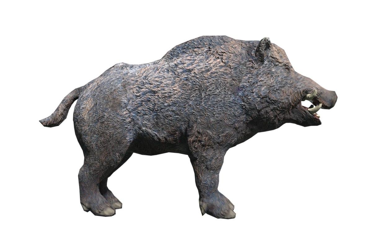 boar model