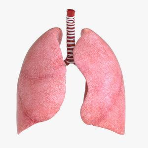 3D human lung