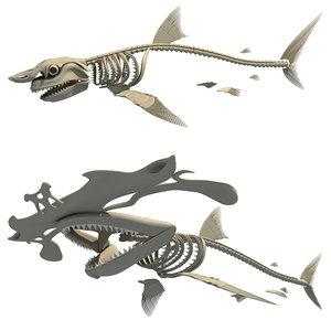 shark skeleton 3D
