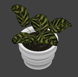 plant interior 3D model