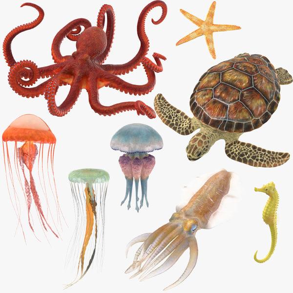 sea animals 01 3D model