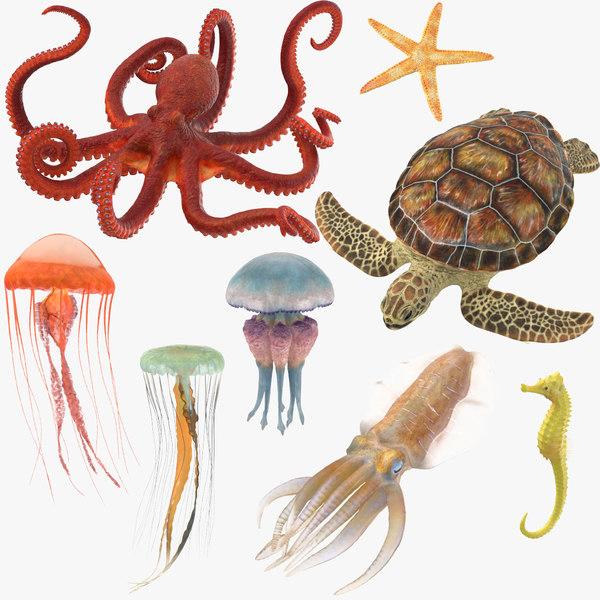 3D sea animals 01