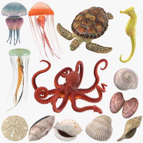 3D sea animals 02