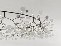 3D heracleum big o model