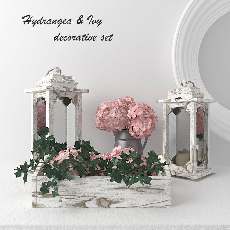 decorative set - hydrangeas 3D