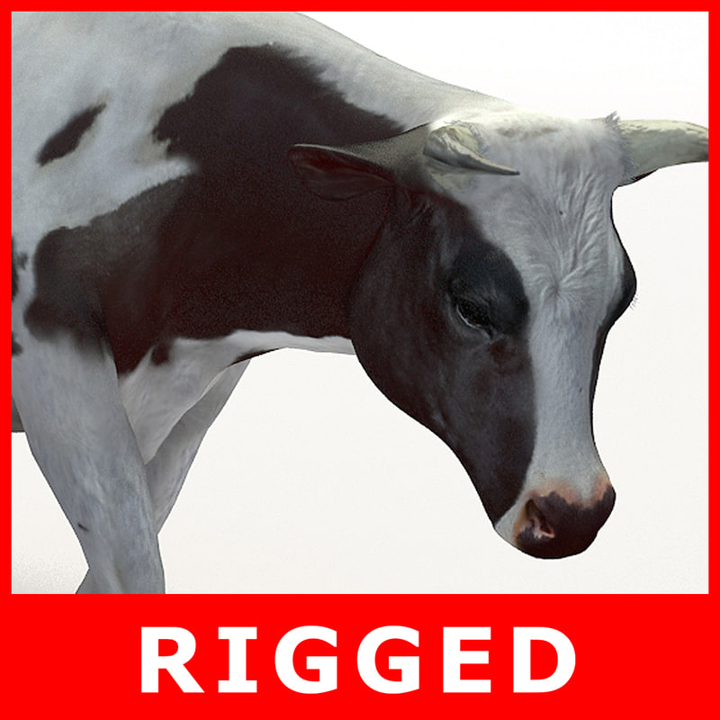 cow rigged 3D model