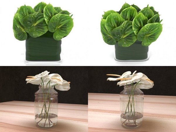 anthuriums smallaccents 3D model