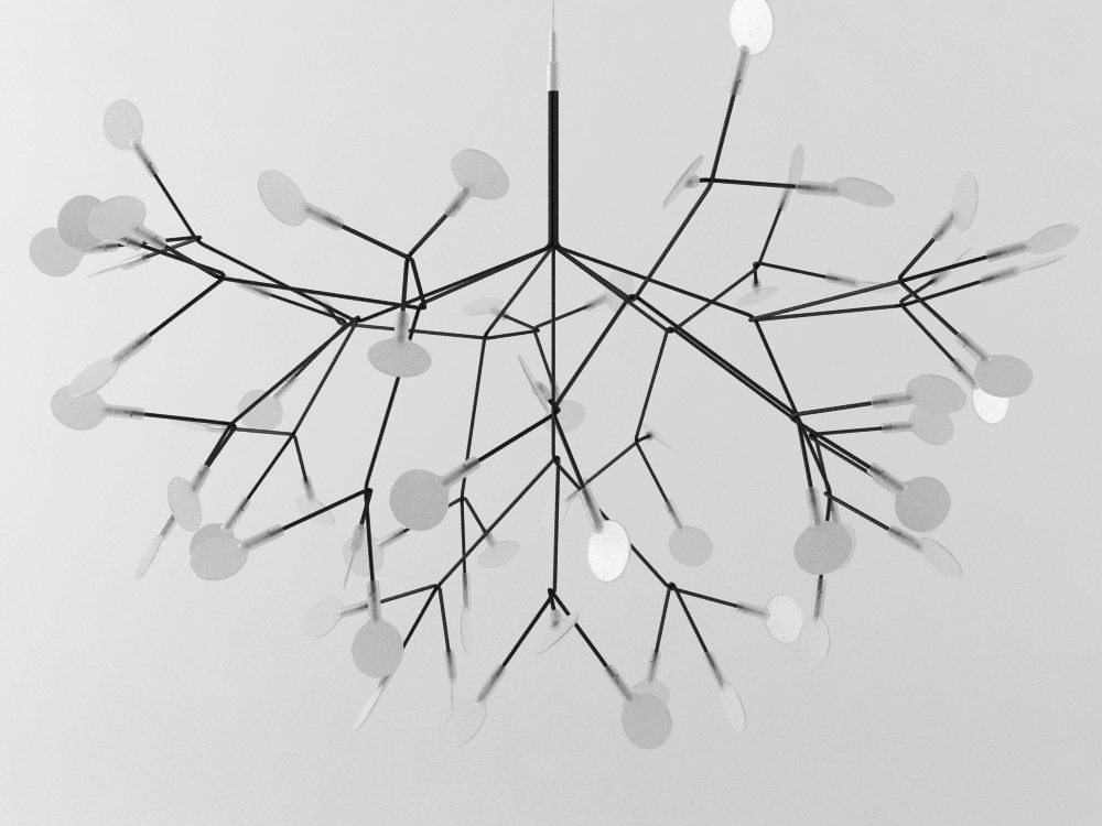 heracleum moooi model