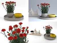 3D model carnations 01