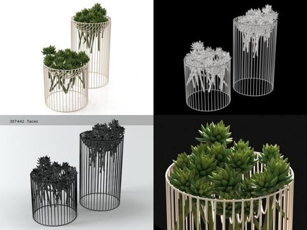 succulents smallaccents 3D model