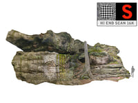 forest rock cliff 16k 3D model