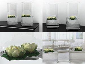 water lilies 3D model