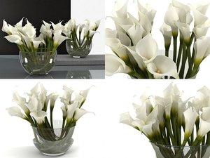 3D calla lily model