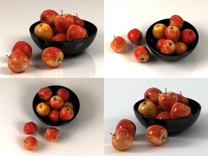 gala apples model
