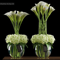 white calla lily flowers 3D model