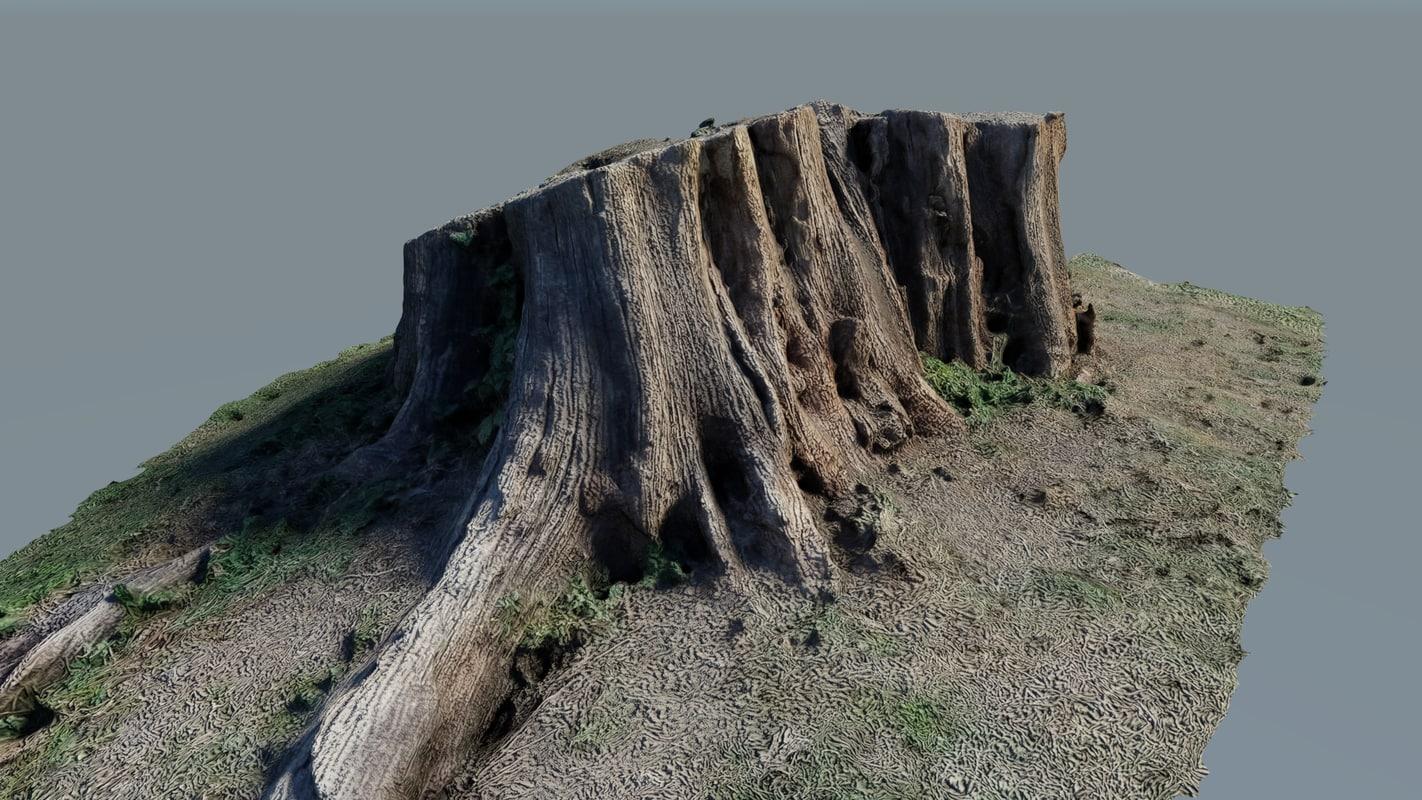 photo-scanned tree stump model