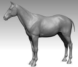 horse ztl zbrush model