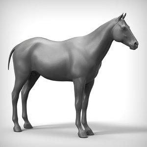 horse base 3D model
