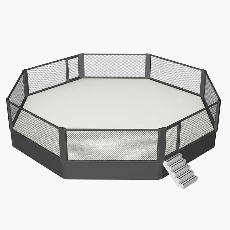 3D model mma cage