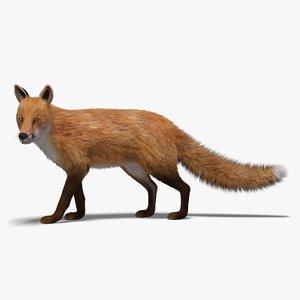 fox fur rigged 3D model